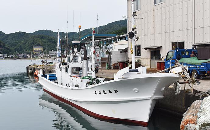 柴山沖でシロイカが平均40杯 港から20分で大漁ポイント!【兵庫】