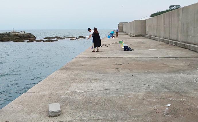 投げキス釣行で20cm級15匹 遠投は置き竿がアタリ【田ノ浦漁港】