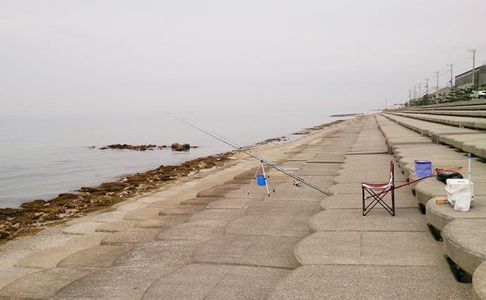夏の投げキス釣りは夜が圧倒的に有利な4つの理由と狙い方キホン解説