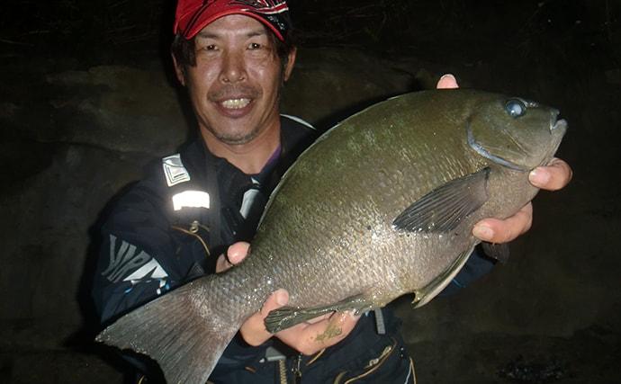 夜のフカセ釣りでグレを釣る方法 まきエサ不要でアオイソメ1本掛け?