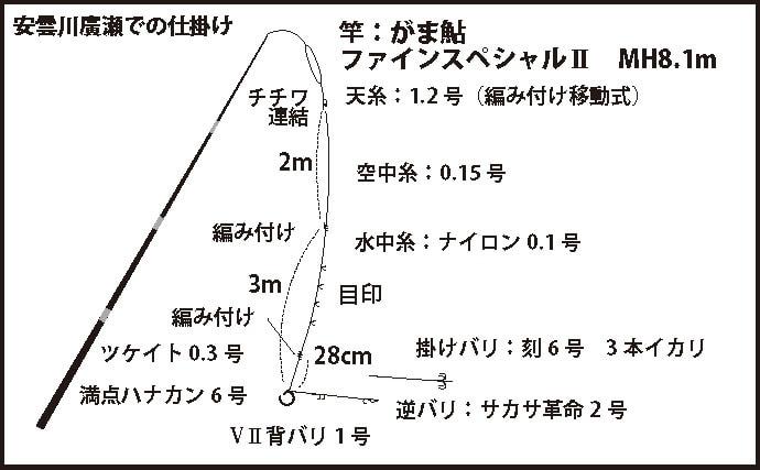 超浅場アユ友釣りで小型主体も入れ掛かり堪能 94尾【滋賀・安曇川】