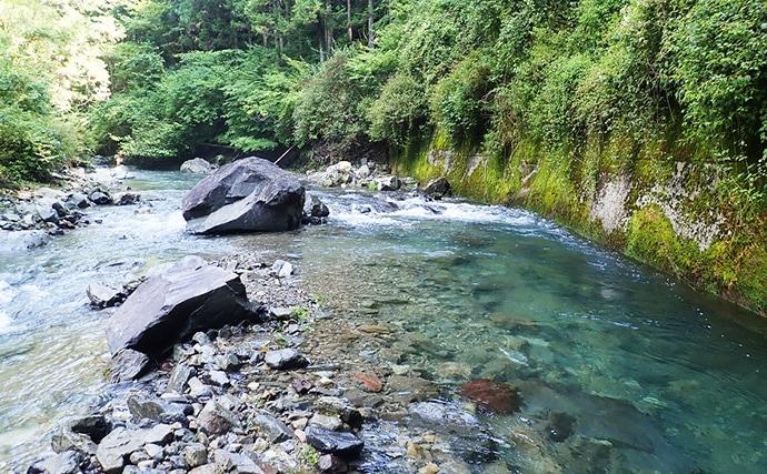 夏の渓流ルアーフィッシングで20cm美アマゴ&イワナと戯れる