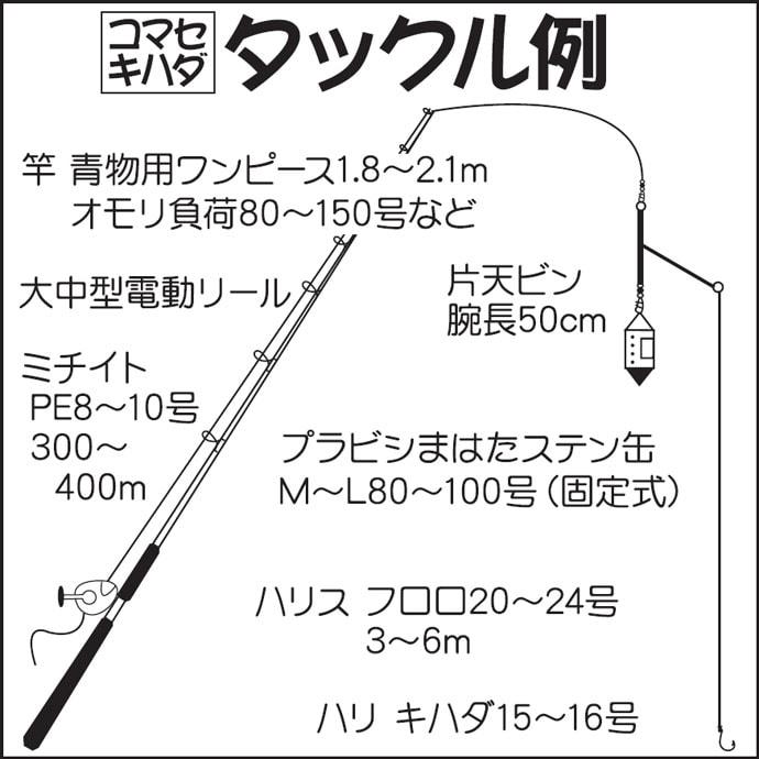 相模湾コマセキハダマグロ&カツオ初心者入門解説 8月1日に解禁!