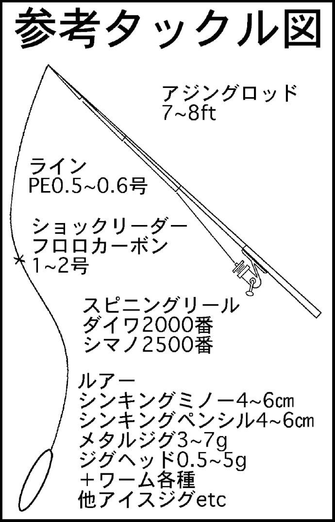 【東海エリア2019】真夏にオススメのライトソルトゲーム4選