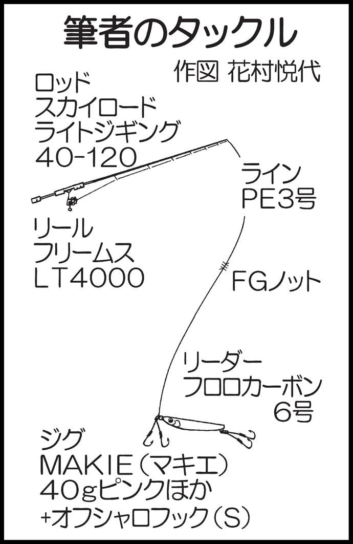 ライトジギングで50cmオーバーアコウ【福岡・ガイドサービスセブン】