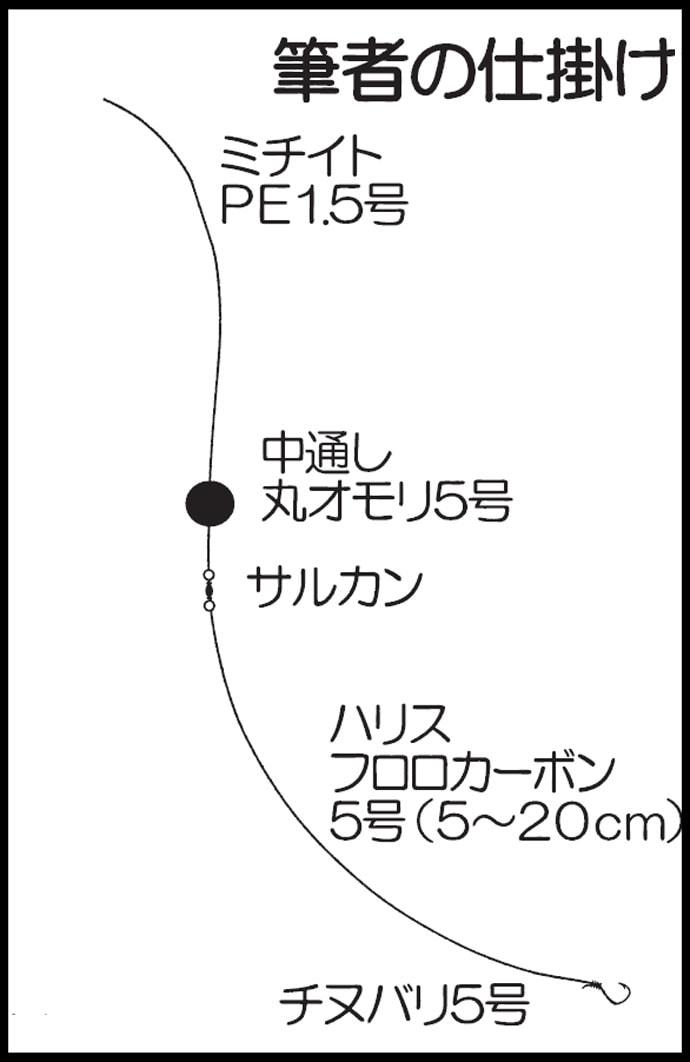 探り釣りで31cmアラカブ 場内では97cmヒラマサ【脇田海釣り桟橋】