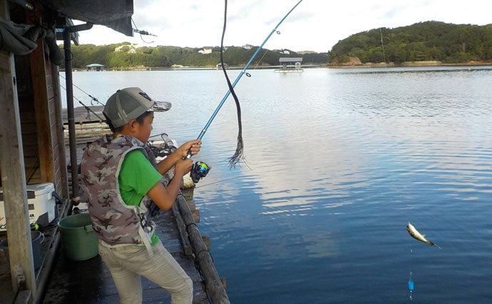 【中部エリア2019】五目釣り最強フィールド『イカダ』初心者入門