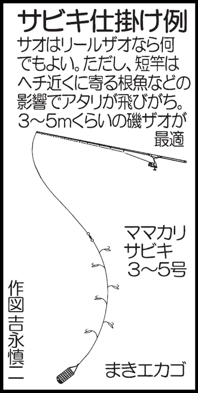 真夏は短時間で楽しめるサビキ釣りがオススメ【熊本県・三角港】