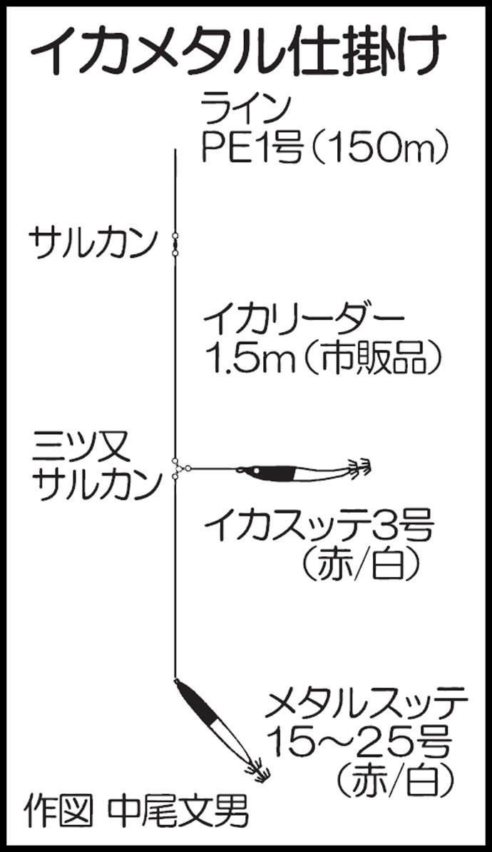 イカメタルでアカイカ好乗り フグに苦戦もトップ本命100尾【鹿児島】