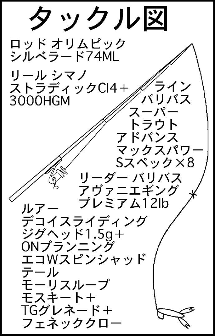 ロックゲームで良型カサゴ連発 チャート&ホッグ系に好反応【愛知県】