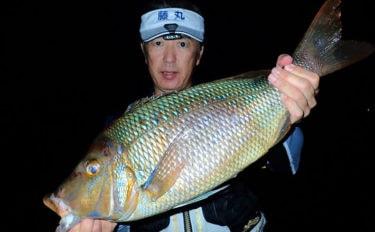 カゴ釣りで4kgタバメ(タマン)にアカハタやシブダイ【鹿児島・上甑島】
