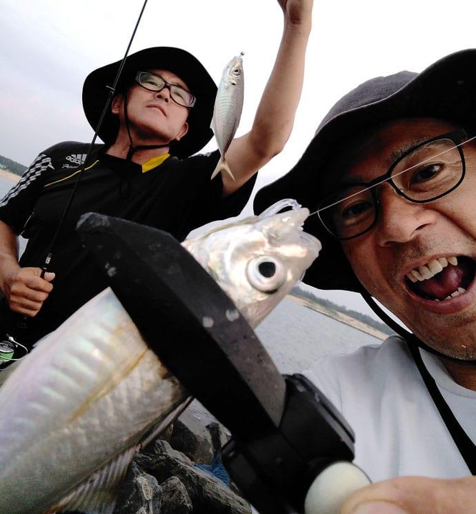 夕マヅメ2時間のアジング釣行で23cm頭に本命18尾【福岡県・芦屋港】
