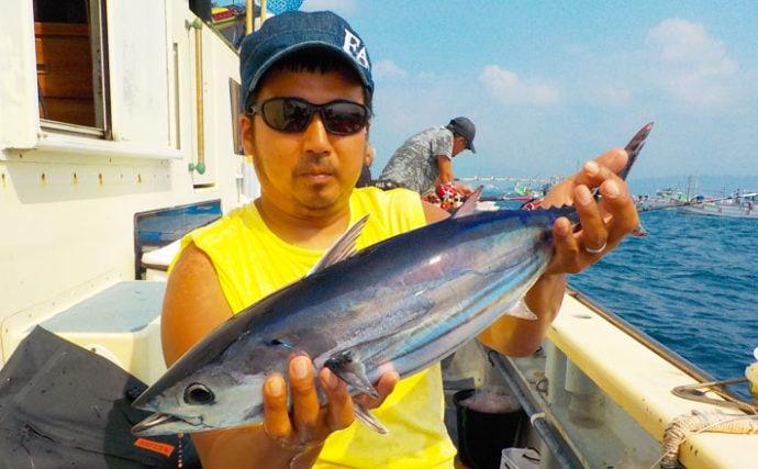 相模湾コマセマグロ&カツオで26kgキハダ カツオも好調【まごうの丸】