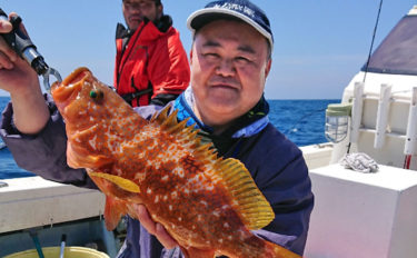 活きアジの『泳がせ釣り』で45cmアコウや沖アラカブ【福岡・胡百】