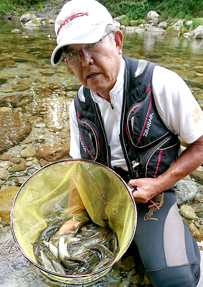 鮎トモ釣りで入れ掛かり61尾 減水河川を「逆上げ」で攻略【尾川川】