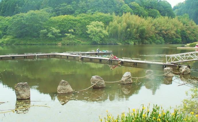 布目ダムでデカサイズ狙いのコイ釣り奮闘記 アタリ多数も切られまくり