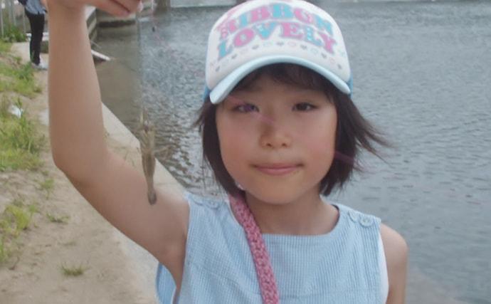 のんびり小物釣りでテナガエビやハゼ類と戯れる【兵庫・武庫川河口】