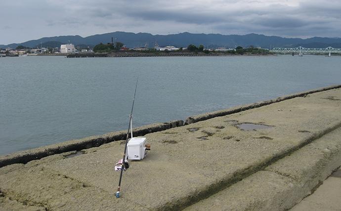 投げキス釣りで本命良型13匹 真夏の晴天続きは河口が狙い目【和歌山】