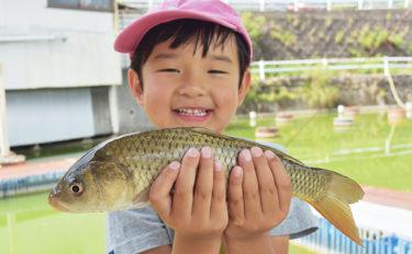 関西オススメ釣り場:竜田川釣り池 貸し道具充実で未経験者も安心【奈良・生駒郡】