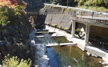 関西オススメ釣り場:井氷鹿の里 レンタル充実でBBQにつかみ取りも【奈良・川上村】