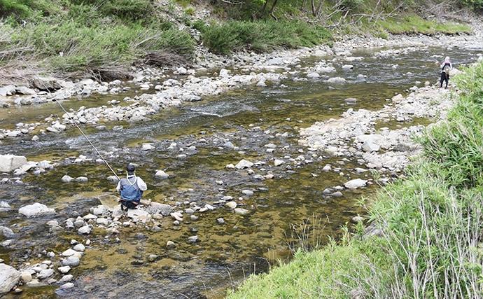 漁協組合長に聞く『一庫大路次川』でアユの遡上が多い3つの理由