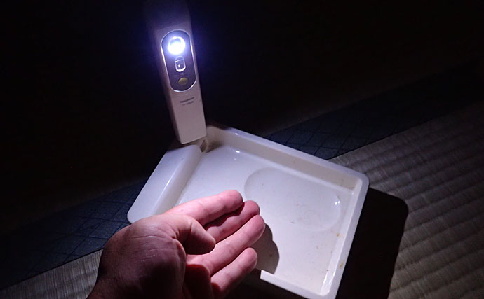 夜釣りに必須の『ライト』使用のススメ ランタン型とヘッドライト型を解説