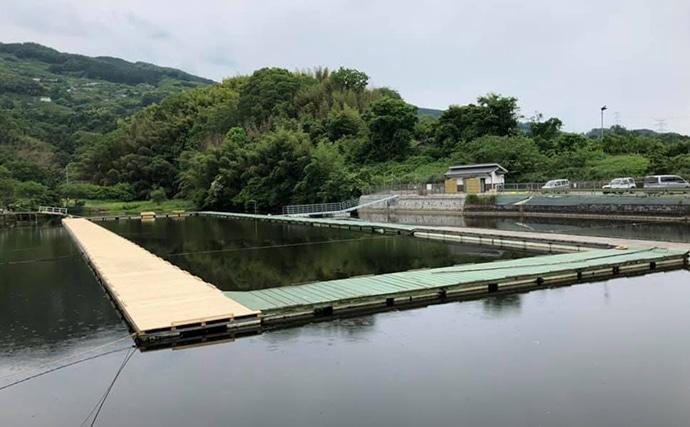紀州竹ザオゆかりの池でヘラブナ釣り 両ダンゴで50匹【隠れ谷池】