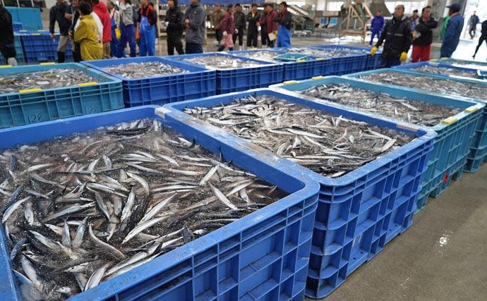 サンマの漁獲量推移と減少傾向の3つの理由 2019年の値段予想は?