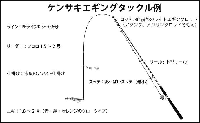 【関西エリア2019】ケンサキエギング攻略法 間もなくシーズン開幕!