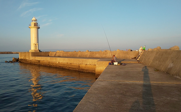 陸っぱりワインド釣法で85cm頭タチウオ好調【和歌山・紀の川河口】