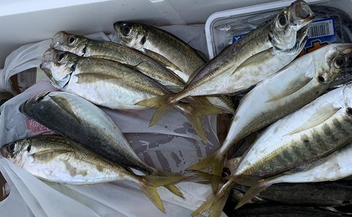 船から電気ウキ仕掛けで狙うタチウオ釣り 96㎝頭に7尾【和歌山県】