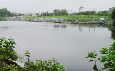 今週のヘラブナ推薦釣り場【群馬県・海老瀬沼】