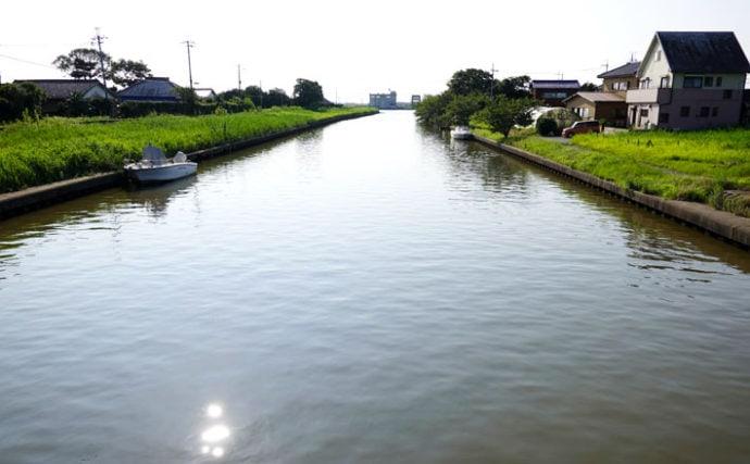 今週のヘラブナ推薦釣り場【千葉県・泪川】