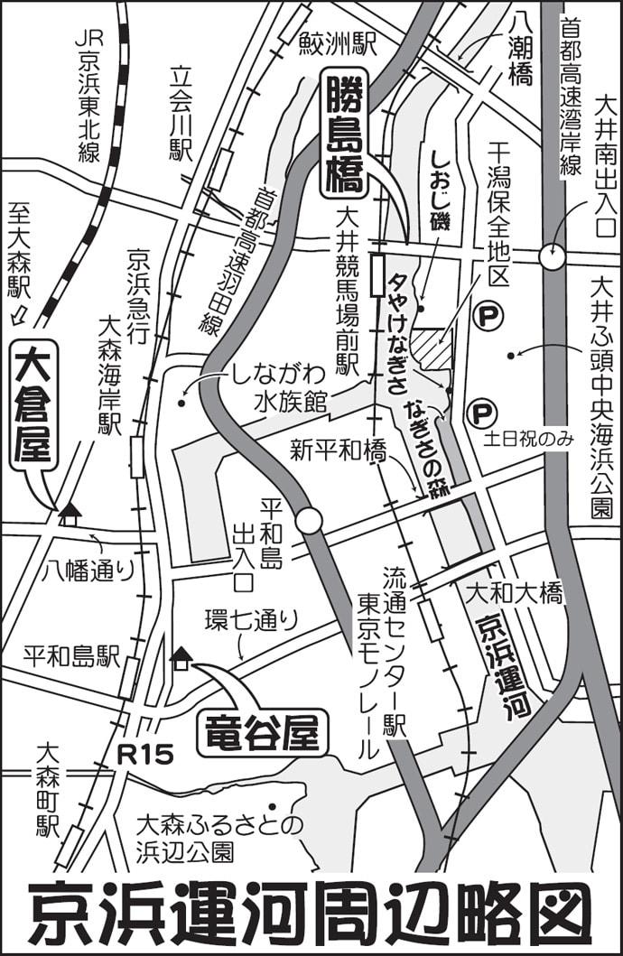電車で行く京浜運河ハゼ釣り 12cm級頭に17尾【東京都・勝島橋】
