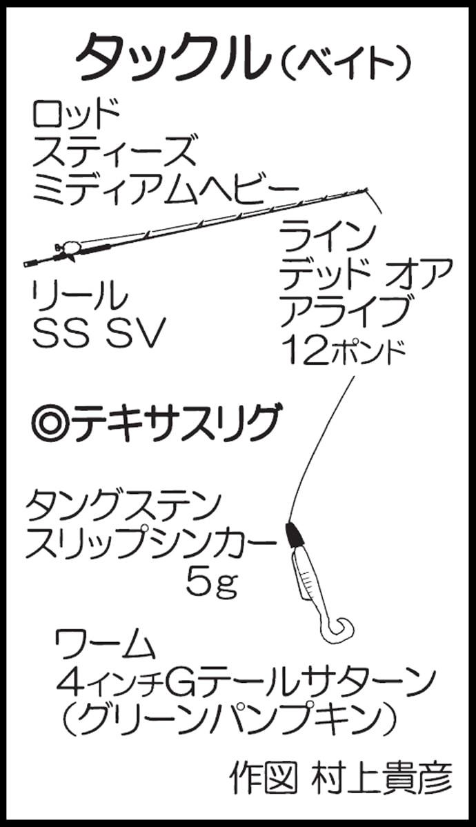 バス釣りで45cmアップ3連発 ハニースポット狙い撃ち【芦川ダム】