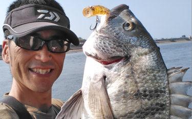 真夏の河川トップウォーターゲーム シーバス&チヌと戯れる【大分県】