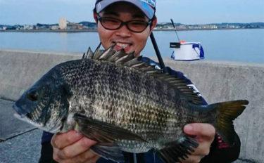 ナイトフカセ釣りでクロダイ2尾 夜はサカナを浮かせて釣る!【愛知】