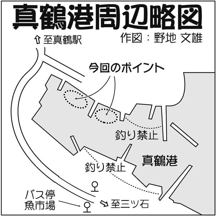 メッキゲームで18㎝本命 狙いはスロープ周辺シャローエリア【真鶴港】