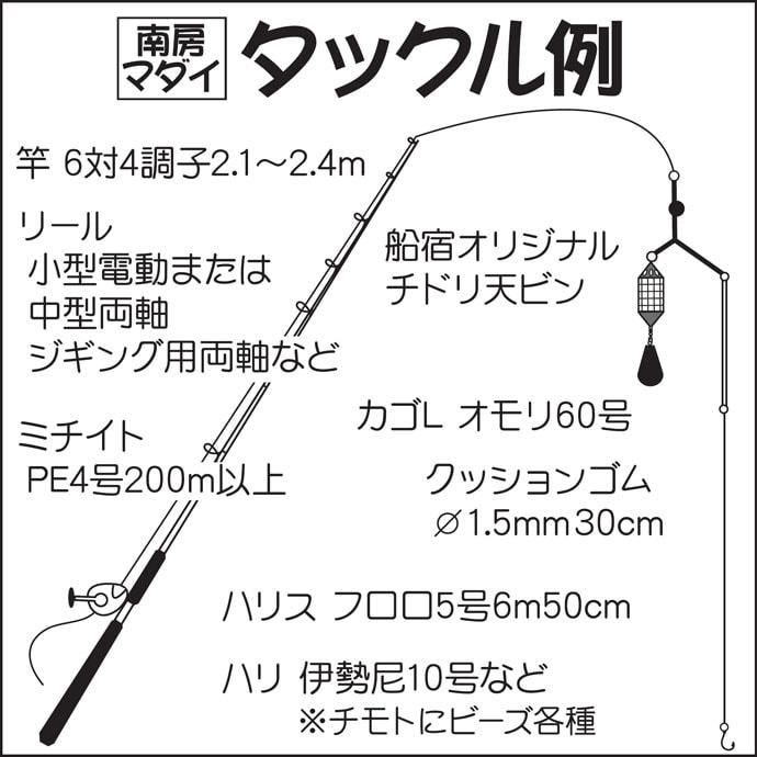 【南房エリア2019秋】大型狙いコマセマダイ基本解説 7kg超えも登場