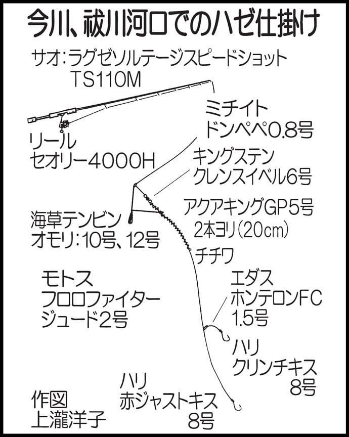 ちょい投げエサハゼ釣りで12〜18㎝本命50尾【福岡・祓川&今川】