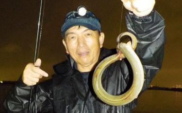 ボート『ぶっこみ』釣りで極太ウナギ7尾 クロダイも連発!【愛知県】