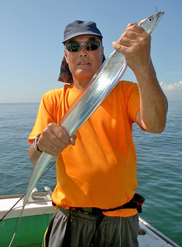船エサタチウオ釣りで95cm頭にトップ33尾 浅場で満喫【鴨下丸】