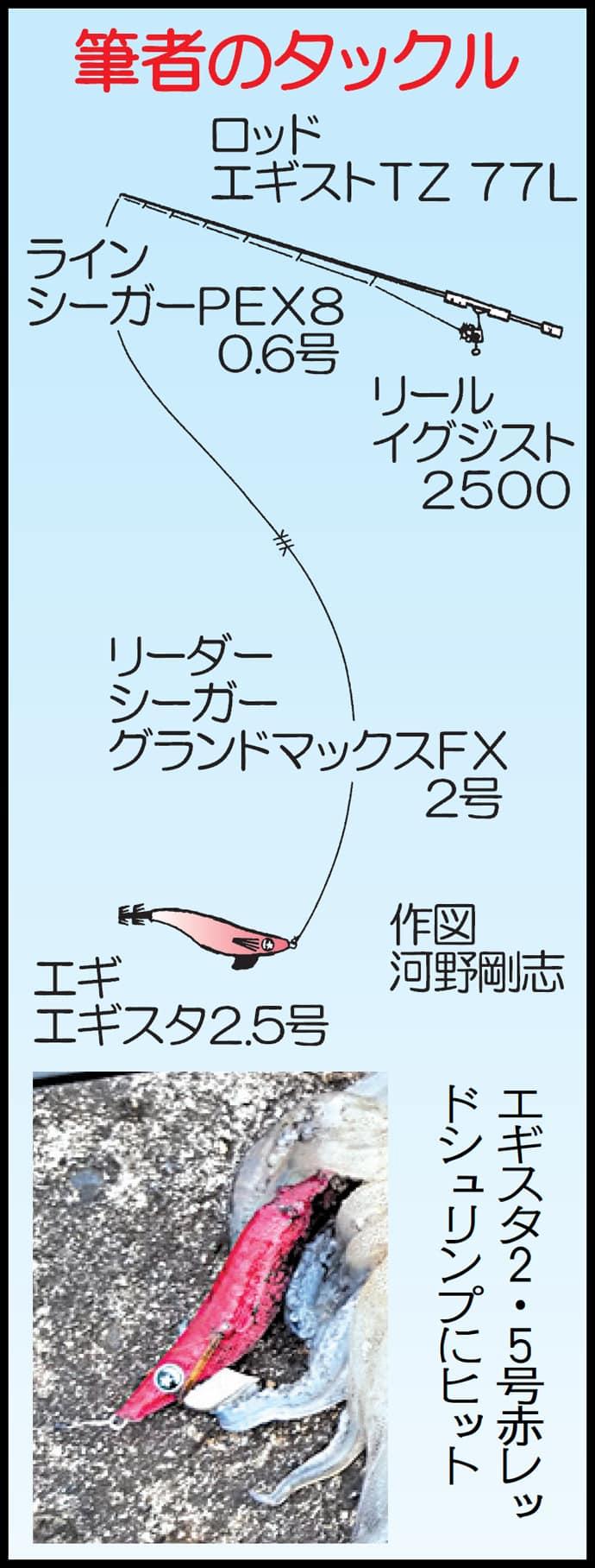 アオリイカ新子狙いのエギングで500g頭に5尾【鹿児島県・枕崎港】