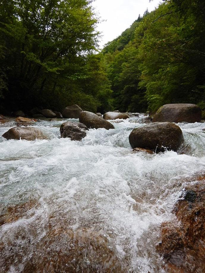 禁漁直前の渓流ルアーで27cm頭にイワナ&アマゴ複数ヒット【柳川】