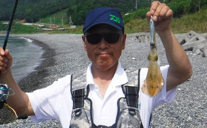 アオリイカ新子狙いエギング コロッケサイズがヒット【福井県】