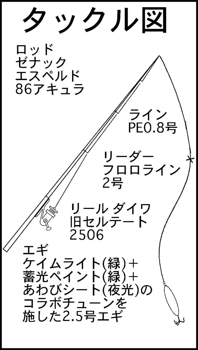 波止エギングで18cmまでのアオリイカ新子連発 沖漬けノルマ達成【福井】