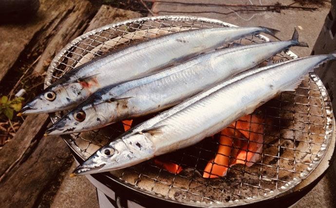 【東日本編】9月に旬を迎える美味しい海の幸5選 関東は黄金サバ!
