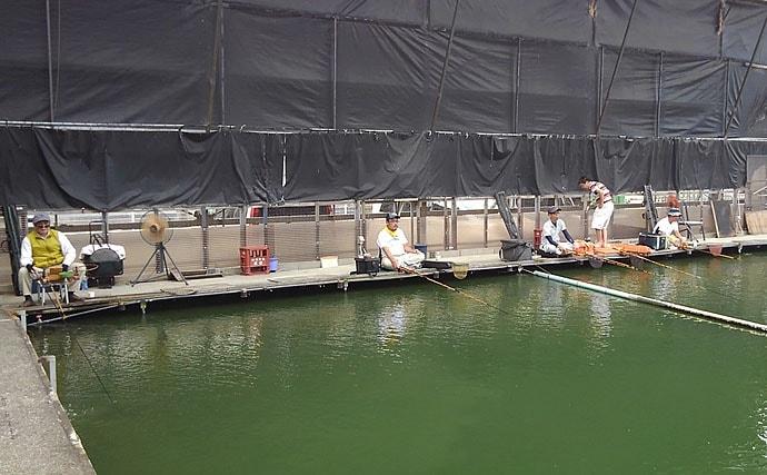 全天候型管理釣り場で秋のヘラブナ釣りを堪能【へら釣り西池】