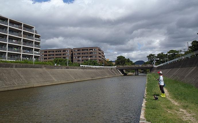 【関西エリア】ルアーで狙えるオススメ『ハゼ釣り場』3選 秋が盛期!