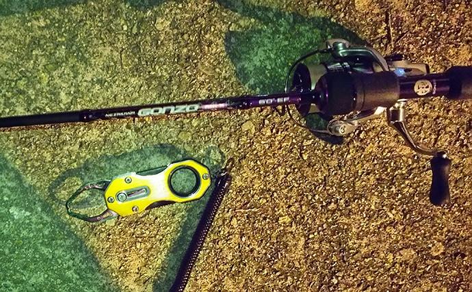 トレンドは電車でGO!:『垂水漁港』でアジング&メバリング